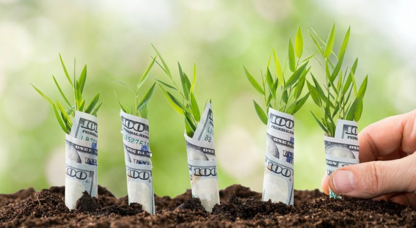об инвестировании для начинающих инвесторов